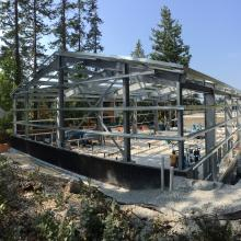 Structural steel frame for new building